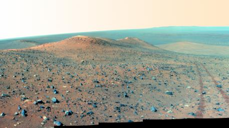 This north-looking vista from NASA's Mars Rover Opportunity shows 'Wdowiak Ridge,' from left foreground to center. This version is presented in false color, which enhances visibility of the rover's wheel tracks at right.