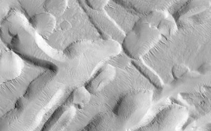 This observation from NASA's Mars Reconnaissance Orbiter shows an incredible diversity of ancient lava tubes and impact craters filled with sediment on the flank of Arsia Mons.