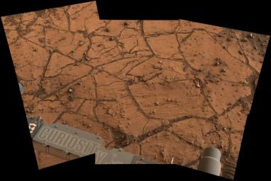This patch of Martian bedrock, about 2 feet (70 centimeters) across, is finely layered rock with some pea-size inclusions. It lies near the lowest point of the 'Pahrump Hills' outcrop, which forms part of the basal layer of Mount Sharp.