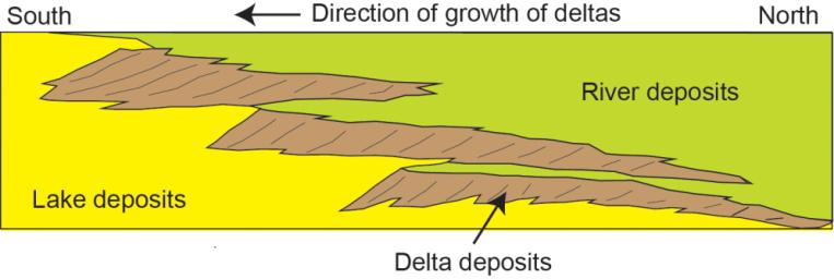 This diagram depicts a vertical cross section through geological layers deposited by rivers, deltas and lakes. Deposits from a series of successive deltas build out increasingly high in elevation as they migrate toward the center of the basin.