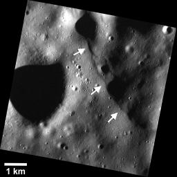 Images obtained from NASA's MESSENGER have revealed a population of small fault scarps (white arrows) that can be more than an order of magnitude smaller in size than their larger counterparts, like Enterprise Rupes.