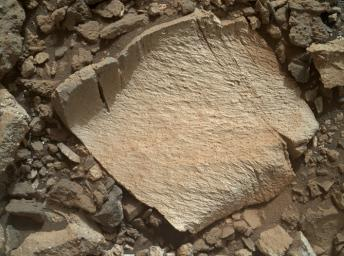 A rock fragment dubbed 'Lamoose' is shown in this picture taken by NASA's Curiosity rover. Like other nearby rocks in a portion of the 'Marias Pass' area of Mt. Sharp, Mars, it has unusually high concentrations of silica.