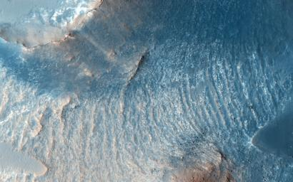 A variety of diverse morphological features are present in this image located in the southeastern area of the Nili Fossae region and just northeast of Syrtis Major as seen by NASA's Mars Reconnaissance Orbiter spacecraft.
