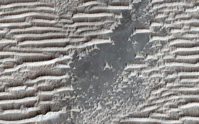 These strange features in Syria Planum have the same general form as transverse aeolian ridges (TARs) elsewhere on Mars; windblown deposits that are common in the Martian tropics, as seen by NASA's Mars Reconnaissance Orbiter spacecraft.