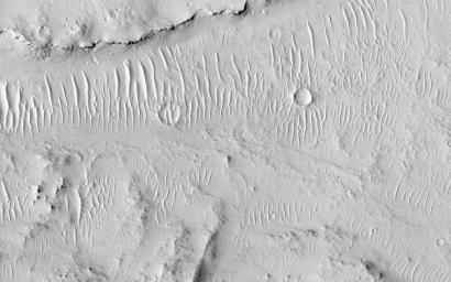 Kasei Valles is a valley system was likely carved by some combination of flowing water and lava. In some areas, erosion formed cliffs along the flow path resulting in water or lava falls as seen by NASA's Mars Reconnaissance Orbiter spacecraft.