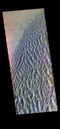 The THEMIS VIS camera contains 5 filters. The data from different filters can be combined in multiple ways to create a false color image. This image from NASA's 2001 Mars Odyssey spacecraft shows part of the dune field on the floor of Proctor Crater.