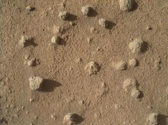 This view from NASA's Curiosity shows nodules exposed in sandstone that is part of the Stimson geological unit on Mount Sharp, Mars. The nodules can be seen to consist of grains of sand cemented together.
