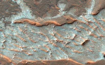 Scientists think these polygonal fractures seen by NASA's Mars Reconnaissance Orbiter spacecraft contain chlorides, like sodium chloride or table salt, or maybe chloride of calcium or magnesium.