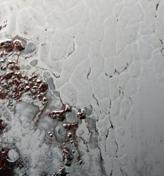 Like a cosmic lava lamp, a large section of Pluto's icy surface is being constantly renewed by a process called convection that replaces older surface ices with fresher material as evidenced by NASA's New Horizons.