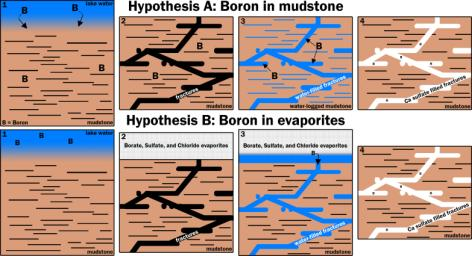 This graphic portrays two hypotheses about how the element boron ended up in calcium sulfate veins found within mudstone layers of the Murray formation on Mars' lower Mount Sharp.