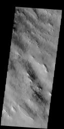 This image captured by NASA's 2001 Mars Odyssey spacecraft shows dust devil tracks in Argyre Planitia.