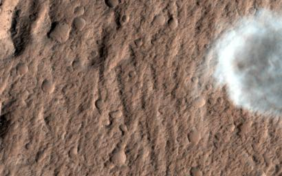 This image captured by NASA's Mars Reconnaissance Orbiter shows a portion of one of many dust devils on Mars.