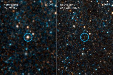 This pair of visible-light and near-infrared photos from NASA's Hubble Space Telescope shows the giant star N6946-BH1 before and after it vanished out of sight by imploding to form a black hole.