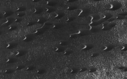 Sand dunes are scattered across Mars and one of the larger populations exists in the Southern hemisphere, just west of the Hellas impact basin. as seen by NASA's Mars Reconnaissance Orbiter.
