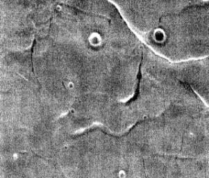 This image captured by NASA's 2001 Mars Odyssey spacecraft resembles a face staring back at the spacecraft.