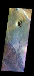 This false color image from NASA's 2001 Mars Odyssey spacecraft shows part of the Nili Patera dune field. Winds are blowing the dunes across a rough surface of regional volcanic lava flows.