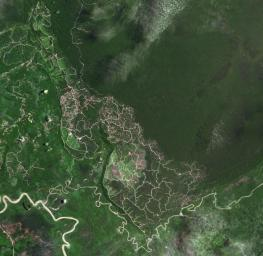 The southwestern border of Brunei with Sarawak, Malaysia is strikingly apparent due to differences in land use practice. This image from NASA's Terra spacecraft was acquired September 10, 2012.
