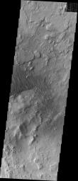 The floor of this crater contains a large exposure of rocky material, a field of dark sand dunes, and numerous patches of what is probably fine-grain sand. This image was captured by NASA's 2001 Mars Odyssey spacecraft.