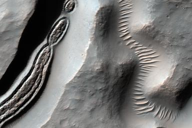 This image from NASA's Mars Reconnaissance Orbiter is a close-up of a trough, along with channels draining into the depression. On the floor of the trough is some grooved material typically seen in middle latitude regions where there has been glacial flow