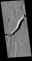 Olympica Fossae is a complex channel located on the volcanic plains between Alba Mons and Olympus Mons. The sinuosity of the large channel in the middle of this image from NASA's 2001 Mars Odyssey indicates that this is a channel created by liquid flow.
