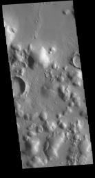 The rounded hills in this image from NASA's 2001 Mars Odyssey spacecraft are located in Arcadia Planitia. Broad linear ridges and groups of hills in this region are part of Phlegra Dorsa and Phlegra Montes.