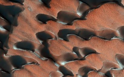 NASA's Mars Reconnaissance Orbiter observed sand dunes in the north polar regions of Mars showing light coatings of pale orange dust blown partially across the dark basaltic sand. Around the edges of the dunes, patches of seasonal dry ice remain.
