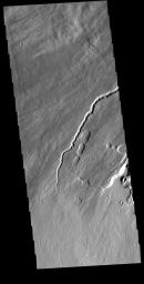 This image from NASA's Mars Odyssey shows part of the southwestern flank of Pavonis Mons. The channel and nearby oval depressions are both related to the flow of lava. Narrow lava flows can create channels.
