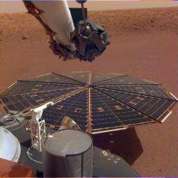 This image shows one of NASA InSight's 7-foot (2.2 meter) wide solar panels as captured by the lander's Instrument Deployment Camera, which is fixed to the elbow of its robotic arm.