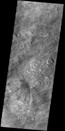 This image from NASA's Mars Odyssey shows a a region dense with dust devil tracks. Located in Promethei Terra, these tracks run parallel to the nearby southeastern margin of Hellas Planitia.