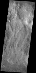 This image from NASA's Mars Odyssey shows part of the inner rim of Kaiser Crater. The rim has been dissected by numerous gullies. Kaiser Crater is located in Noachis Terra.