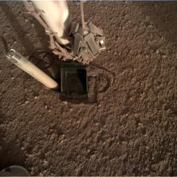 In this image from Oct. 26, 2019, InSight's heat probe is seen after backing about halfway out of the hole it had burrowed.