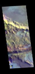 This image from NASA's Mars Odyssey shows part of Mangala Fossa.