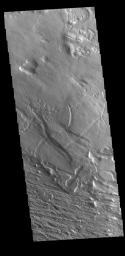 This image from NASA's Mars Odyssey shows an area near Gordii Dorsum has been eroded for millions of years. Long term unidirectional winds scour the surface into linear patterns.