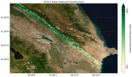 This image shows preliminary solar-induced fluorescence (SIF) measurements from OCO-3 over western Asia.