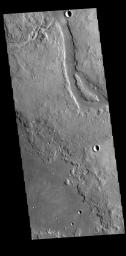 This image from NASA's Mars Odyssey shows Granicus Valles, a complex channel system located west of Elyisum Mons.