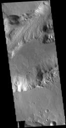 This image from NASA's Mars Odyssey shows a section of Shalbatana Vallis. Located in Xanthe Terra, Shalbatana Vallis is one of many channels that empty into Chryse Planitia.