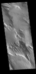 This image from NASA's Mars Odyssey shows part of Medusa Fossae. Winds have eroded materials in this region, creating ridges and valleys aligned with the direction of the wind.