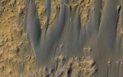 This image, acquired on December 28, 2019 by NASA's Mars Reconnaissance Orbiter, shows a braided texture, typical of dunes that are transitioning into sand sheets.