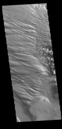 This image from NASA's Mars Odyssey shows the intersection of Medusae Fossae and Medusae Sulci.