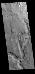 This image from NASA's Mars Odyssey shows a portion of an unnamed channel in Arabia Terra.