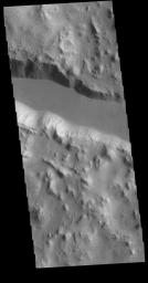 This image from NASA's Mars Odyssey shows one of the linear depressions of Cerberus Fossae.