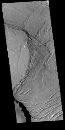 This image from NASA's Mars Odyssey shows part of the summit caldera of Olympus Mons.