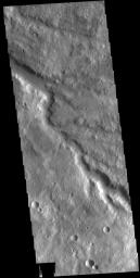 This image from NASA's Mars Odyssey shows a section of an unnamed channel in Tyrrhena Terra.