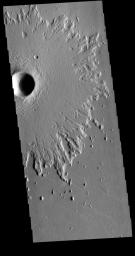 This image from NASA's Mars Odyssey shows Amazonis Planitia. Amazonis Planitia is host to many pedestal craters, which indicate the region has had significant erosion.