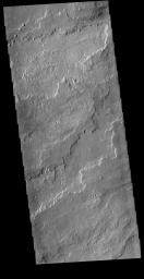This image from NASA's Mars Odyssey shows a portion of the immense volcanic flow fields in the Tharsis region.