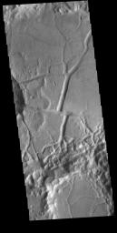 This image from NASA's Mars Odyssey shows part of the floor of an unnamed crater in Margaritifer Terra.