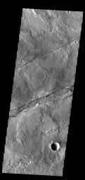 This image from NASA's Mars Odyssey shows linear depressions, part of Sirenum Fossae.