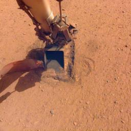 The mole, a heat probe that traveled to Mars aboard NASA's InSight lander, as it looked after hammering on Jan. 9, 2021. After trying since Feb. 28, 2019, to bury the probe, the mission team called an end to their efforts.