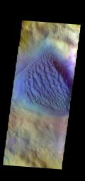 This image from NASA's Mars Odyssey shows the large sand sheet on the floor of Matara Crater. The top of the sand sheet has been sculpted by the wind, creating dune forms.