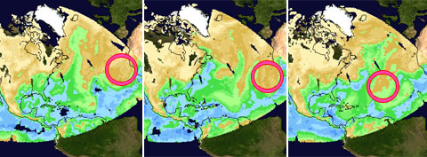Click here for Quicktime movie of Total Water Vapor around Sahara Dust Cloud